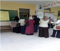 التعديلات الدستورية 2019| توافد الناخبين بالأعلام على لجان الاستفتاء بالبحيرة