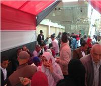 بالطوابير .. السيدات يتصدرن المشهد بلجان الاستفتاء على التعديلات الدستورية ٢٠١٩