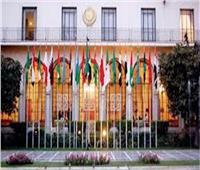 التعديلات الدستورية 2019|الجامعة العربية تبدأ عملها بمتابعة التصويت في الاستفتاء