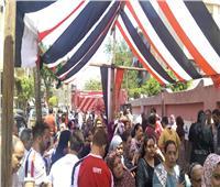 التعديلات الدستورية 2019| أبرز أحداث اليوم الأول للاستفتاء داخل مصر