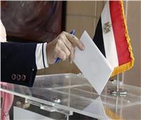 أعضاء منتخب مصر للسباحة المفتوحة يدلون بصوتهم في الاستفتاء بالكويت