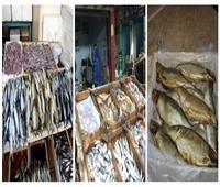 10 إجراءات لـ«الزراعة» لمراقبة أسواق الأسماك الطازجة والمملحة قبل شم النسيم