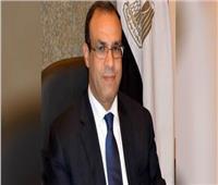 تصويت المصريين في الخارج| بدر عبد العاطي يشيد بمشاركة الجالية المصرية في الاستفتاء بألمانيا