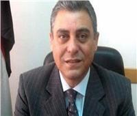 فيديو| سفير مصر في استراليا: مقار لجان الاستفتاء تحولت لعرس ديمقراطي