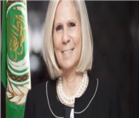 التعديلات الدستورية 2019| رئيس بعثة الجامعة العربية تشيد بنزاهة الاستفتاء