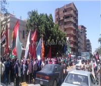 مسيرة حاشدة لدعوة المواطنين للمشاركة في الاستفتاء بأسيوط