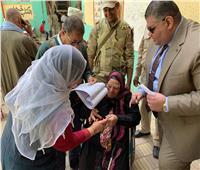 التعديلات الدستورية 2019| رئيس لجنة بطنطا يساعد كبار السن على التصويت في الاستفتاء