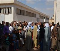عمال الغزل والحديد ومصر للألومنيوم ينظمون مسيرة للمشاركة في الاستفتاء