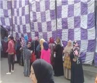 التعديلات الدستورية 2019| المرأة تتصدر لجان الاستفتاء في عين شمس