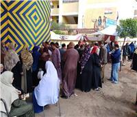 التعديلات الدستورية 2019| تزايد أعداد المواطنين بلجان الاستفتاء في شبين القناطر