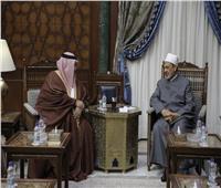 شيخ الأزهر يناقش تحديات القضية الفلسطينية مع وزير خارجية البحرين
