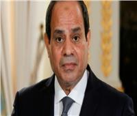 رئيس جمهورية تشاد يصل القاهرة للقاء السيسي