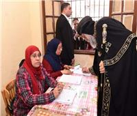 البابا تواضروس يطالب «الوطنية للانتخابات» بعدم معاقبة موظفة لجنته الانتخابية