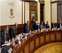 رئيس الوزراء يوجه الشكر للمصريين على مشاركتهم في الاستفتاء