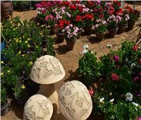 صور| رئيس جهاز مدينة الشروق يفتتح معرض زهور الربيع 2019