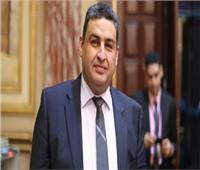 برلماني: زيارة الرئيس للصين تؤكد أهمية مصر في القارة الإفريقية