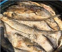 ضبط 28 طن أسماك مملحة غير صالحة للاستهلاك الآدمي بالغربية