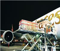 رحلة طيران لتمثال عمرة 2000 سنة من باكستان لسويسرا