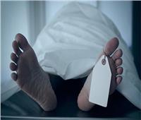 تفاصيل جريمة قتل سائق بـ«الشارع الجديد» بشبرا الخيمة