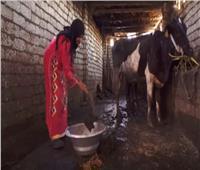 فيديو.. تعرف على كنوز الصرف الصحي