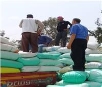 توريد 2 مليون و381 ألف أردبا من القمح لصوامع وشون الشرقية