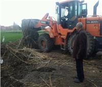 إزالة 207 حالة تعدٍ علي الأراضي الزراعية بالشرقية