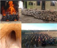 استشهاد ضابطين و3 جنود ومقتل 47 تكفيريًا في عمليات نوعية للقوات المسلحة بسيناء
