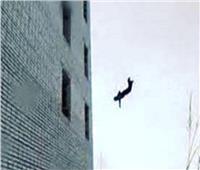 انتحار طالبة بإلقاء نفسها من الطابق الرابع في الإسكندرية