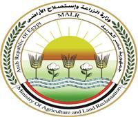 «الزراعة»تحتفل بتخريج متدربين جدد من 7 دول إفريقية