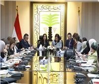 القومي للمرأة يترأس الاجتماع الأول لـ«القضاء على ظاهرة تشويه الأعضاء التناسلية»