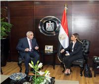 وزارة الاستثمارتبحث ترتيبات عقد اللجنة العليا المشتركة بين مصر والعراق