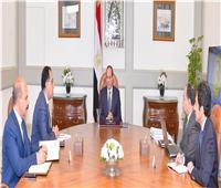 فيديو| تفاصيل اجتماع السيسي مع رئيس الوزراء ووزير المالية