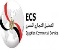 «التمثيل التجاري» يبحث فرص الترويج الاستثماري لمصر مع «اليونيدو» بطوكيو