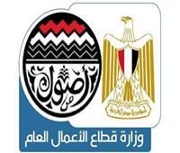وزارة قطاع الأعمال العام تنتهي من تقييم الأداء القيادي لرؤساء الشركات