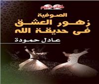«كتاب اليوم» يُقدم قراءة للتجربة الصوفية لعادل حمودة