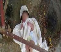 حبس عامل ألقى جثة رضيع فى الطريق العام بالبساتين