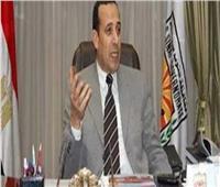 شوشة: حوافز لجذب المستثمرين إلى شمال سيناء
