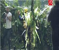 فيديو| وليد سليمان يفقد أعصابه أمام غوريلا «رامز في الشلال»