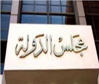 22 يونيو.. الحكم في دعوى تعديل أسعار الترابط بين «فودافون» وكافة الشبكات