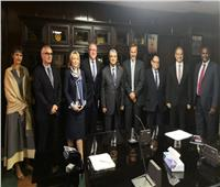 الكهرباء: مصر تشارك في جميع مشروعات الربط الكهربائي الإقليمية