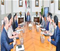 فيديو| تفاصيل اجتماع السيسي مع رئيس الوزراء ووزير الآثار