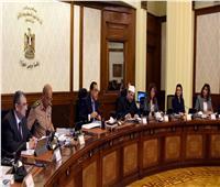 الحكومة توافق على إصدار قانون جهاز حماية وتنمية البحيرات والثروة السمكية