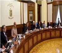 الحكومة توافق على تعديل لائحة تنظيم مزاولة الأنشطة والأعمال المرتبطة بالنقل البحري