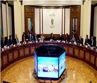 الحكومة تلغي المجلس القومي لمكافحة وعلاج الإدمان