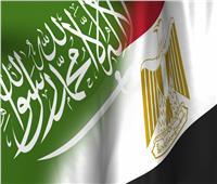 الإحصاء: 44.1 % ارتفاعًا في قيمة الاستثمارات السعودية بمصر