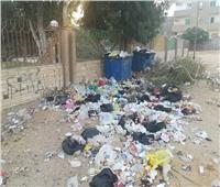 حي الأميرية يعتذر للمواطنين بسبب سوء النظافة