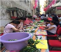 توزيع 60 ألف وجبة إفطار.. وتطوير المنازل في القرى الفقيرة بالإسكندرية