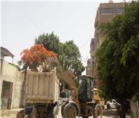 صور  محافظ الجيزة: حملات نظافة بالعجوزة وصيانة سريعة للمسطحات الخضراء