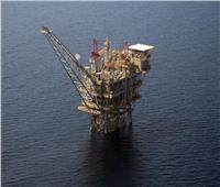 مصر متحدث رئيسي في المؤتمر الدولي «دور الغاز الطبيعي بالمنطقة»