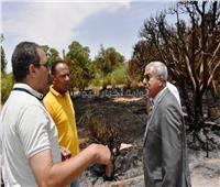 محافظ أسوان يحيل المسئولين عن الحديقة الدولية للنيابة بسبب حريق الأمس